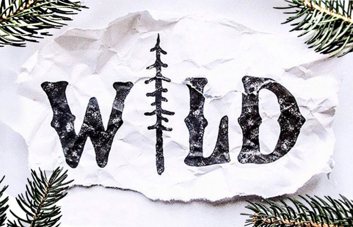 wild-slide